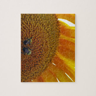 Sunflower with Bumblebees Jigsaw Puzzle