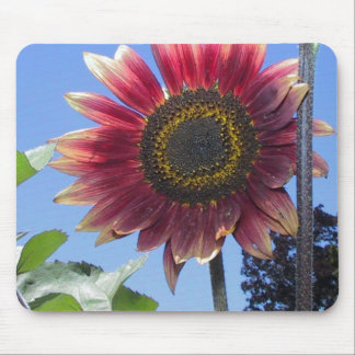 Sunflower with Unique Red Leaves Mouse Pad