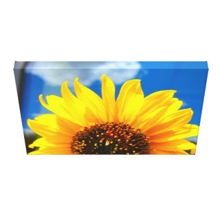 Sunflower Wrapped Canvas