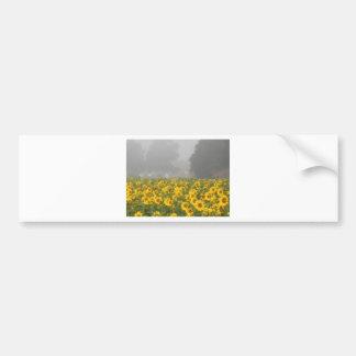 Sunflowers and Mist Bumper Sticker