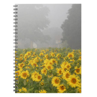 Sunflowers and Mist Notebooks