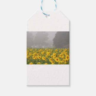 Sunflowers and Mist Pack Of Gift Tags