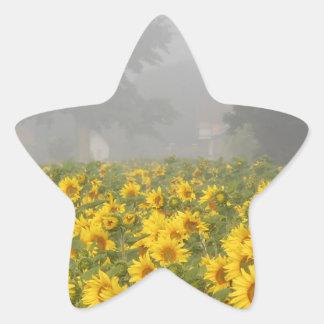 Sunflowers and Mist Star Sticker