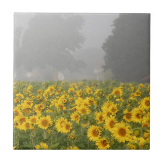 Sunflowers and Mist Tile