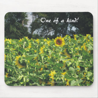 Sunflowers Galore Mouse Pad
