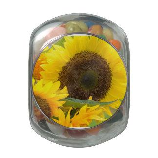 Sunflowers in Bloom