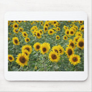 Sunflowers Mouse Mats