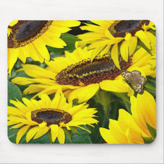 SUNFLOWERS ~  Mousepad