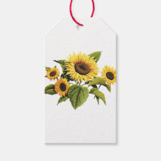 Sunflowers Pack Of Gift Tags