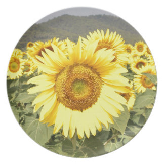 Sunflowers Party Plate