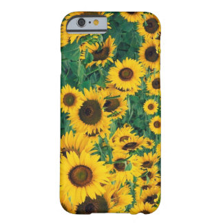 Sunflowers Print Barely There iPhone 6 Case