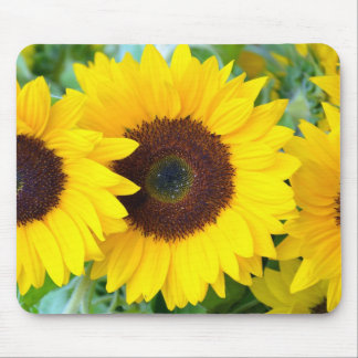 Sunflowers print mousepad