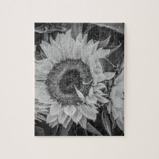 Sunflowers Puzzles