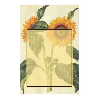 Sunflowers Stationery Design