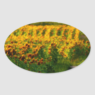 Sunflowers to Brighten your day Oval Sticker