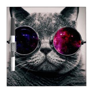 sunglasses cat dry erase whiteboards