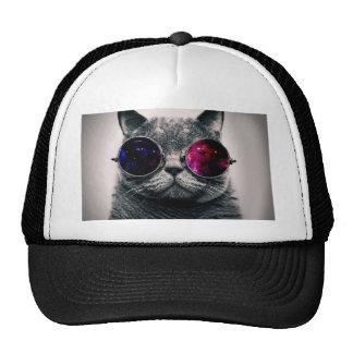 sunglasses cat trucker hat