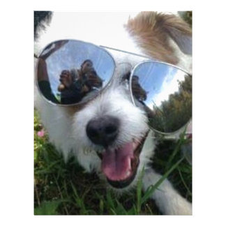 Sunglasses on dog BRIGHT FUTURE for ME Letterhead