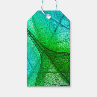 Sunlight Filtering Through Transparent Leaves Gift Tags
