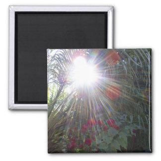 Sunlight Garden Magnet