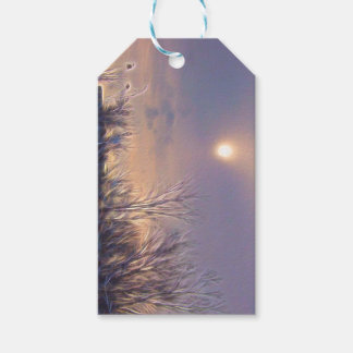 Sunlight of winter pack of gift tags