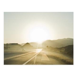 Sunlight on the Road Postcard