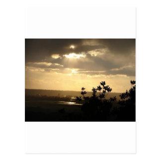 Sunlight Postcard