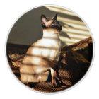 Sunlight Shadows Siamese Cat Ceramic Knob