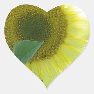 Sunlight Sunflower Heart Sticker