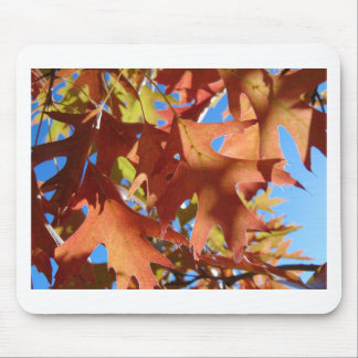 Sunlight Through Autumn Leaves Mouse Pad