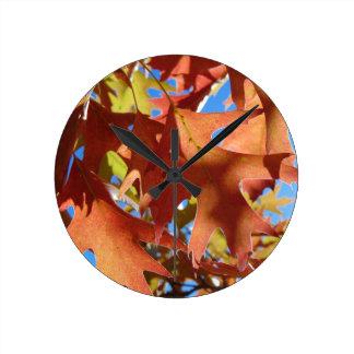 Sunlight Through Autumn Leaves Round Clock