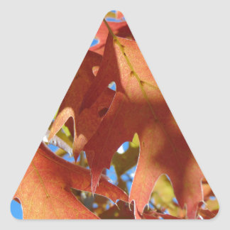 Sunlight Through Autumn Leaves Triangle Sticker
