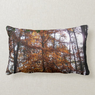 Sunlight through Fall Tree at Greenbelt Park Lumbar Pillow