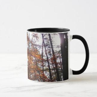 Sunlight through Fall Tree at Greenbelt Park Mug