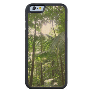 Sunlight Through Rainforest Canopy Tropical Green Maple iPhone 6 Bumper