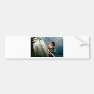 Sunlight Warrior Bumper Sticker