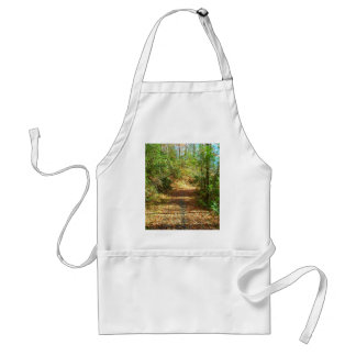 Sunlit Autumn Forest Trail Standard Apron