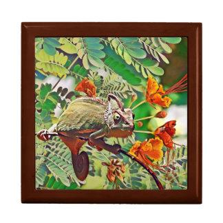Sunlit Chameleon Gift Box