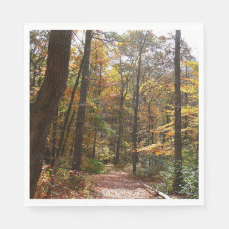 Sunlit Fall Trail in Laurel Hill State Park Paper Napkin