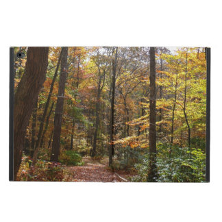 Sunlit Fall Trail in Laurel Hill State Park Powis iPad Air 2 Case