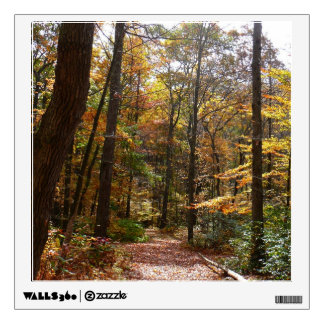 Sunlit Fall Trail in Laurel Hill State Park Wall Decal