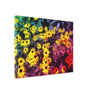 Sunlit Meadow Canvas Print