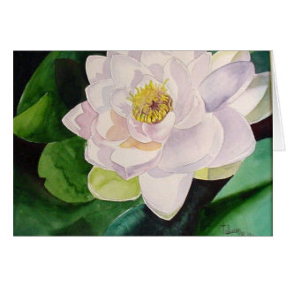 Sunlit Water Lily Card