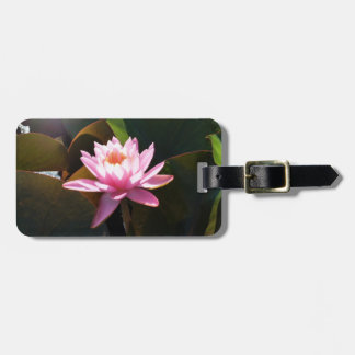Sunlit Waterlily Pink Floral Water Garden Luggage Tag