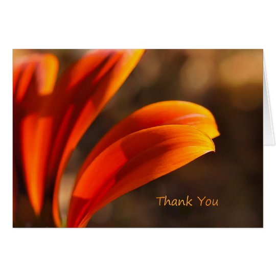 Sunny Afternoon Thank You Note Card