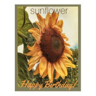 Sunny Birthday Wishes Postcard