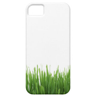 Sunny bright green grass earth photograph print iPhone 5 covers