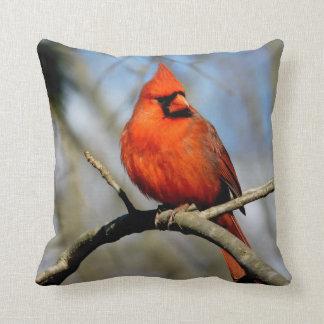 Sunny Cardinal Crest Pillow