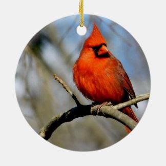 Sunny Cardinal Crest Premium Ornament
