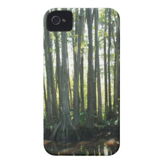 Sunny Cypress Case-Mate iPhone 4 Cases